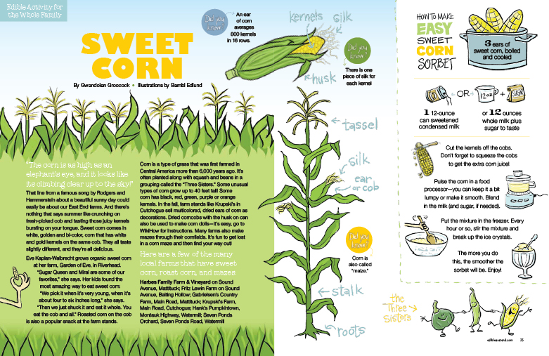 Corn Kids page