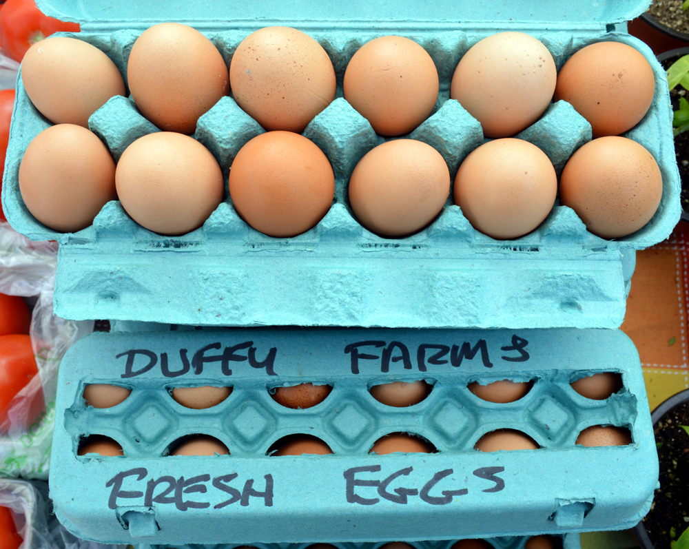 cartons of Duffy's eggs