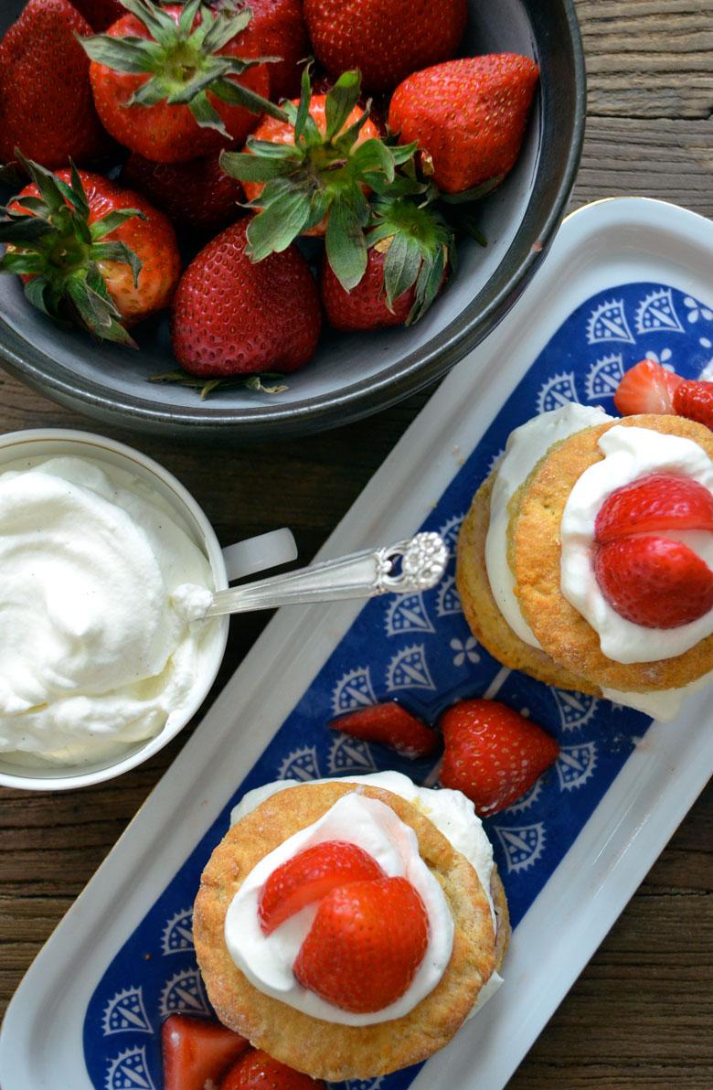strawberry-shortcake_02_laura-luciano