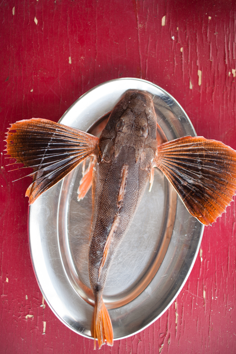 Edible East End contributor presents sea robin five ways.