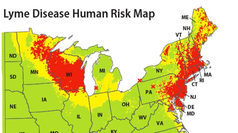 Lyme-Disease-Map-2012