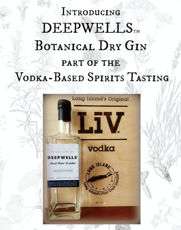 deepwels gin