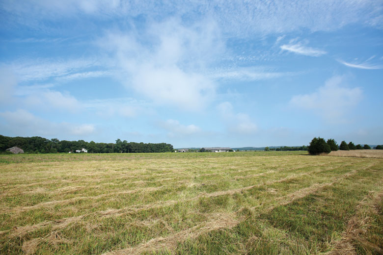 Danilvesky-Field_Peconic-Land-Trust