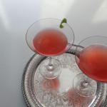 rhubarb-shoot_13_eileen-Duffy