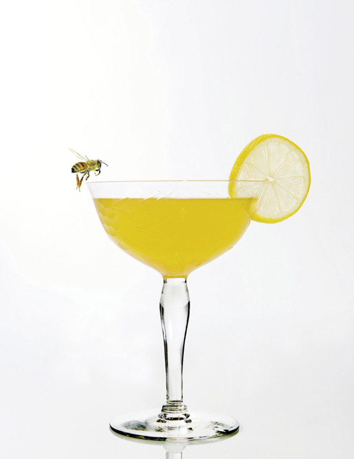 bee-cocktail_daniel-gonzalez