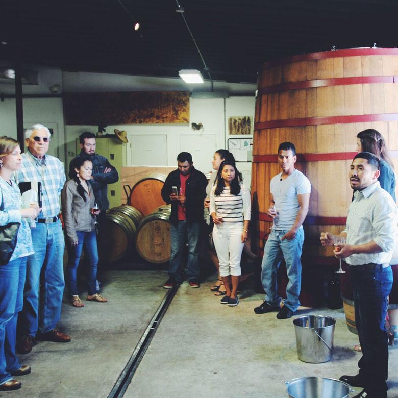 vino-latino_16_bedell-cellars