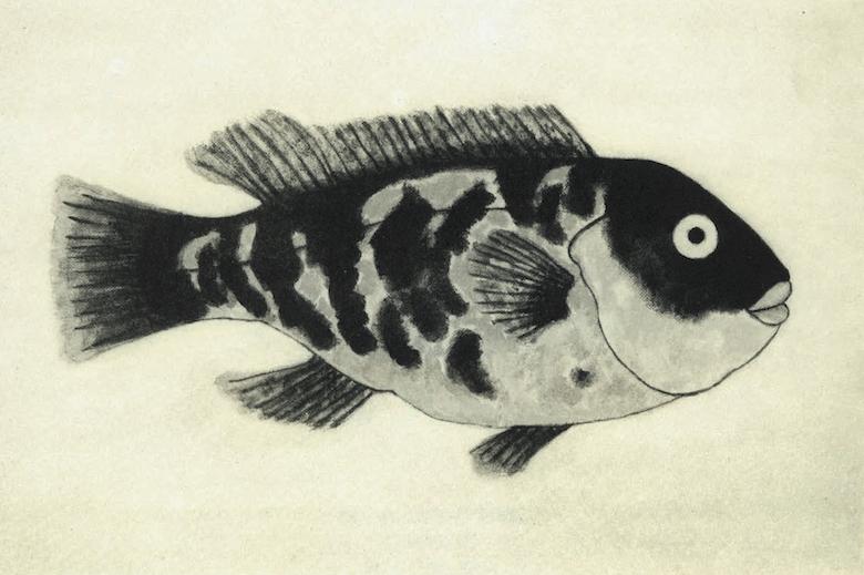 Ode to Blackfish 1 Ronald Halweil