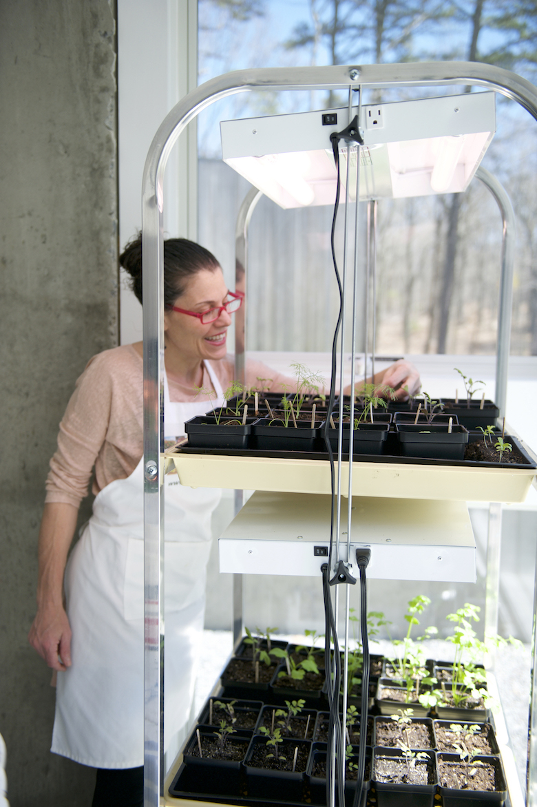 Laura Luciano at home with her seedlings and growing rack.