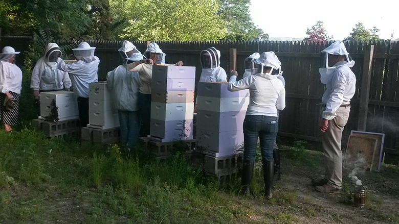 A beekeeping class at Promised Lane Apiaries. • facebook photo