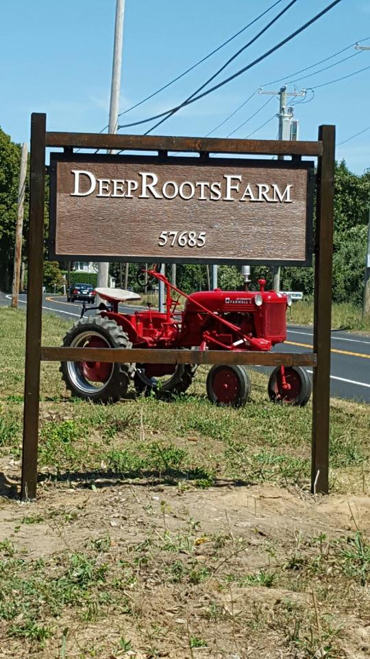 deep roots farm stand