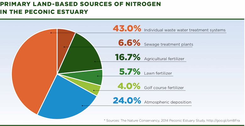As this ATF infographic illustrates, 16.7% of Nitrogen in the Peconic Estuary is attributed to agricultural fertilizers and 49.6% comes from individual waste water treatment systems and sewage treatment plants.