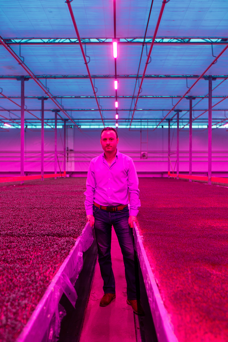 koppert cress manager Nicolas Mazard