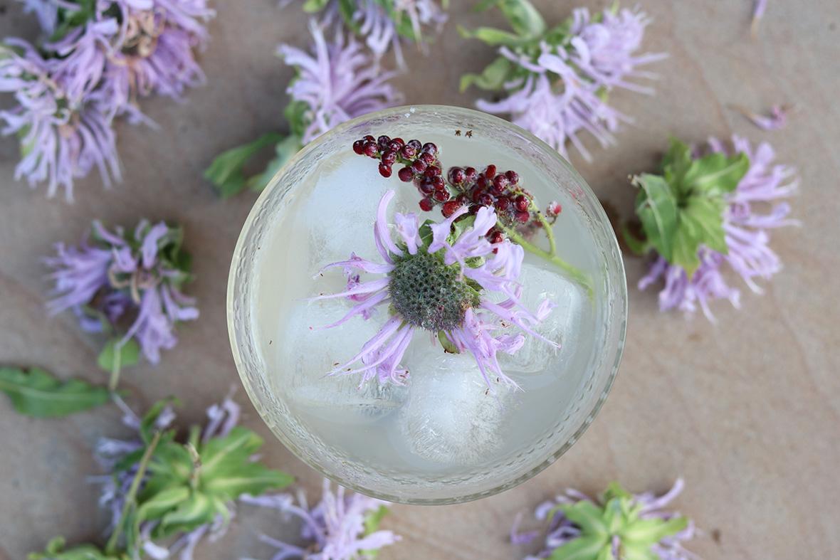 forage-cocktail-marie-viljoen